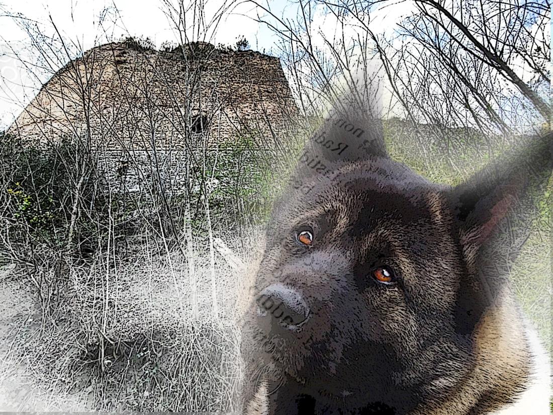 Maya e il castello.jpg